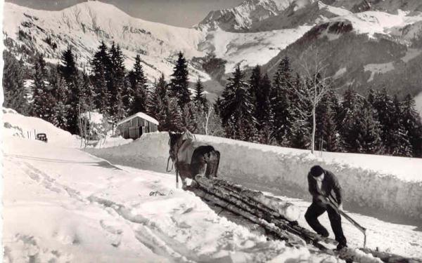 Hauteluce descente bois hiver
