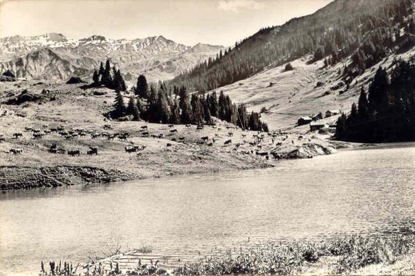 Roselend lac Treicol
